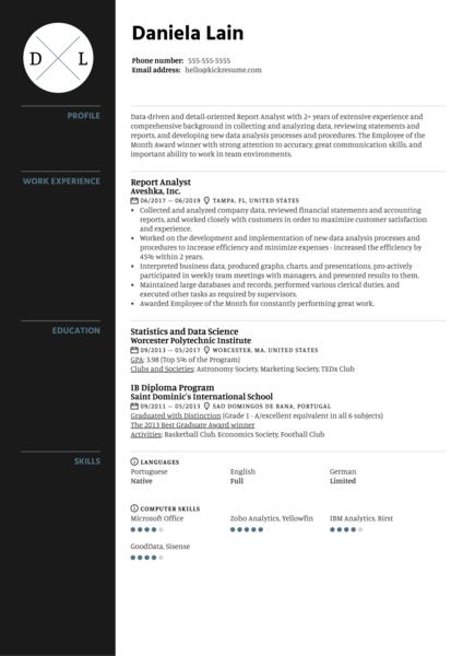 Report Analyst Resume Sample