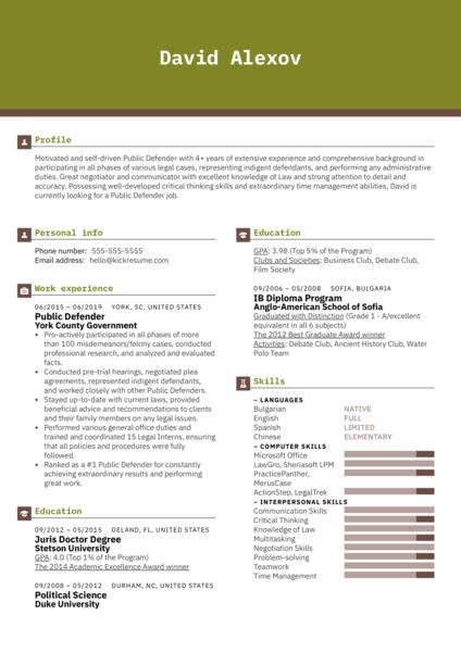 Public Defender Resume Example