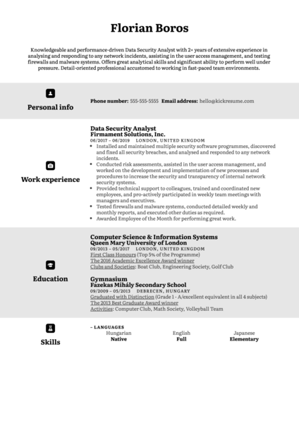 Data Security Analyst Resume Example
