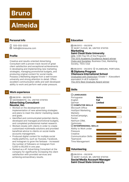 Advertising Consultant Resume Example