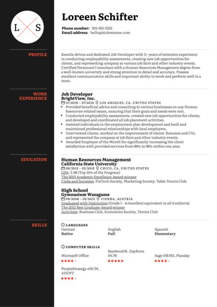 Job Developer Resume Sample