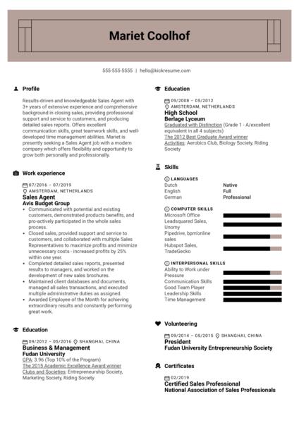 Sales Agent Resume Example