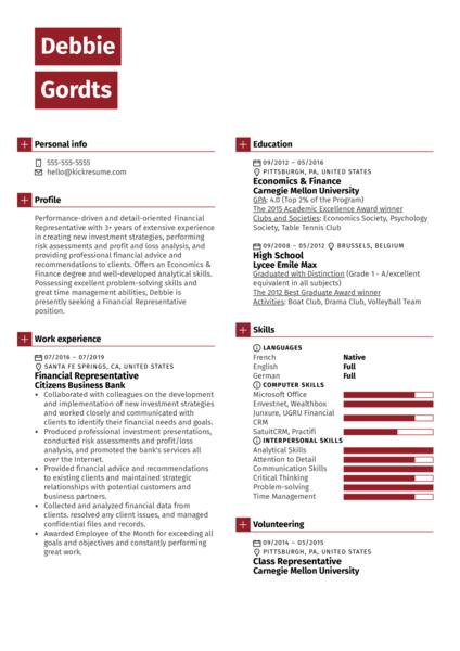 Financial Representative Resume Example