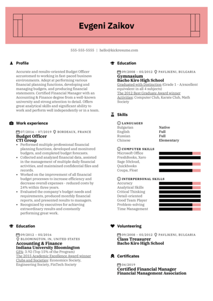 Budget Officer Resume Example