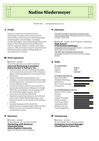 Internet Marketing Consultant Resume Example