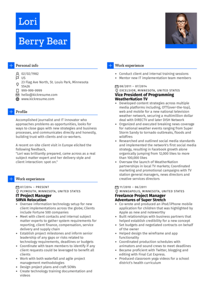 Project Manager, Journalist CV Sample