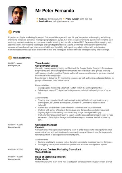 Google Team Leader Resume Sample