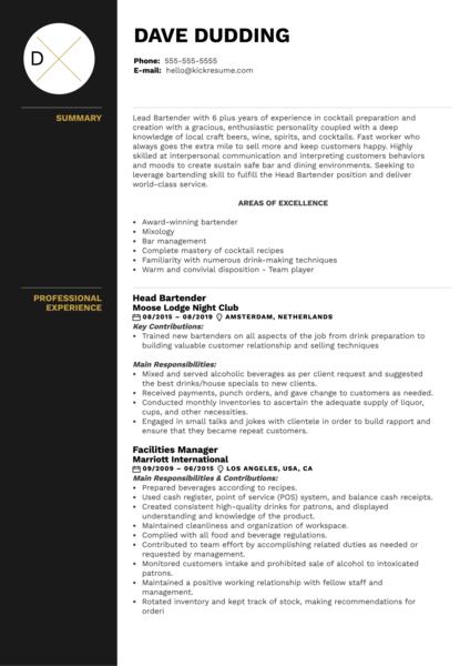 Head Bartender Resume Example