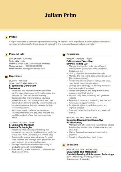 Yamaha E-commerce Executive Resume Example