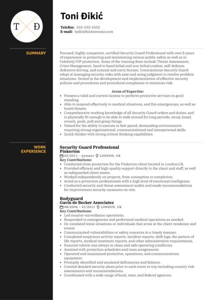 Security Guard Professional Resume Sample