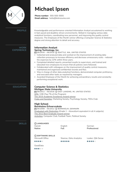 Information Analyst Resume Example
