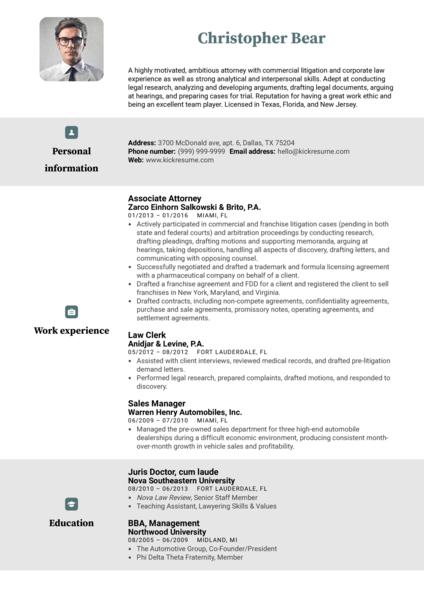 Law Clerk Resume Example