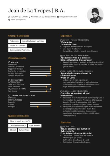 Webmaster/webmestre Resume Example [FR]