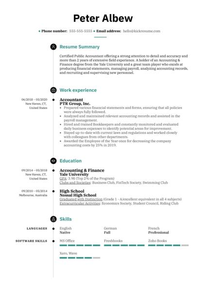 Resume Summary Example