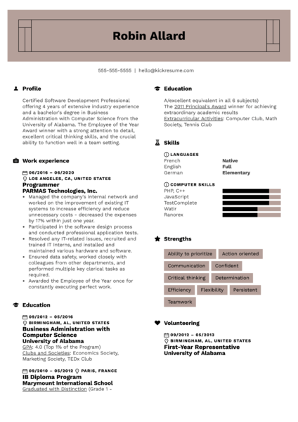 Programmer Resume Template