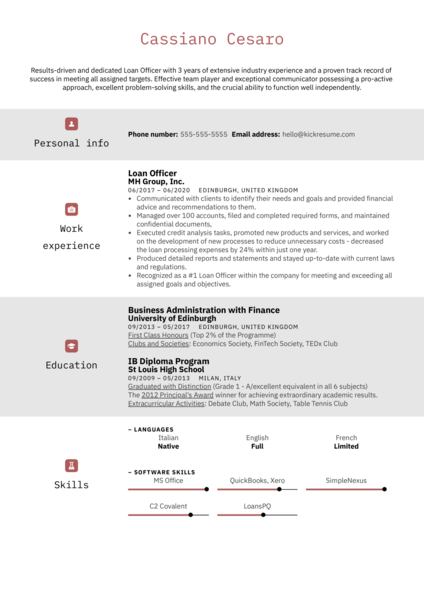 Professional Loan Officer Resume Example