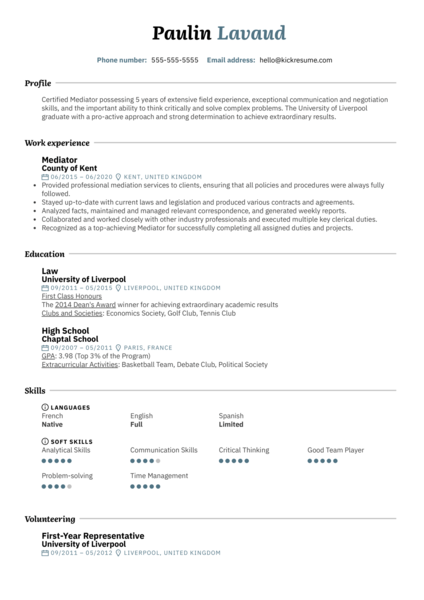 Original Mediator Resume Example