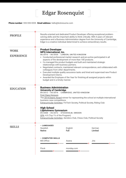 Product Developer Resume Sample