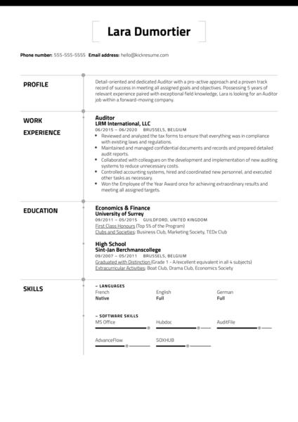 Free Auditor Resume Sample