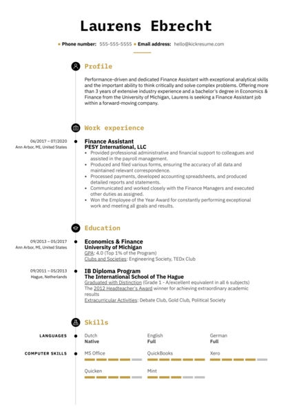 Resume for Job Application Example