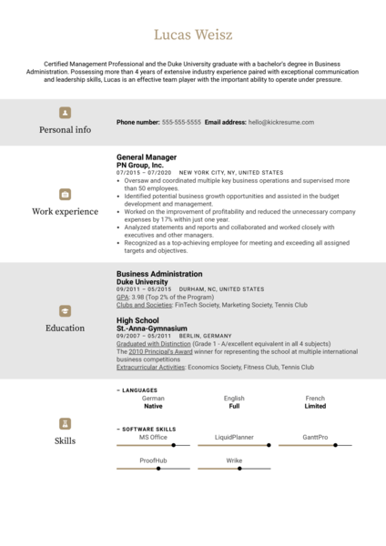 Professional General Manager Resume Example