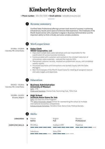 Sales Clerk Resume Example