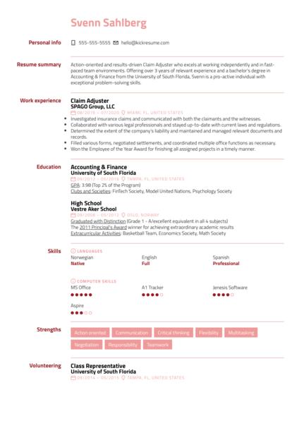 Claim Adjuster Resume Example
