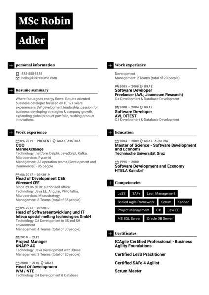 COO Resume Example