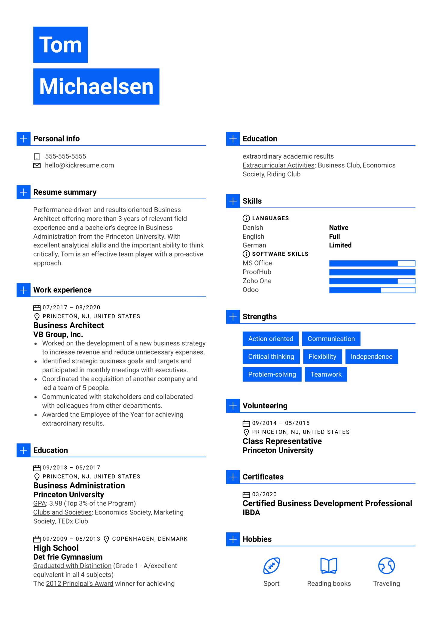 Business Architect Resume Example