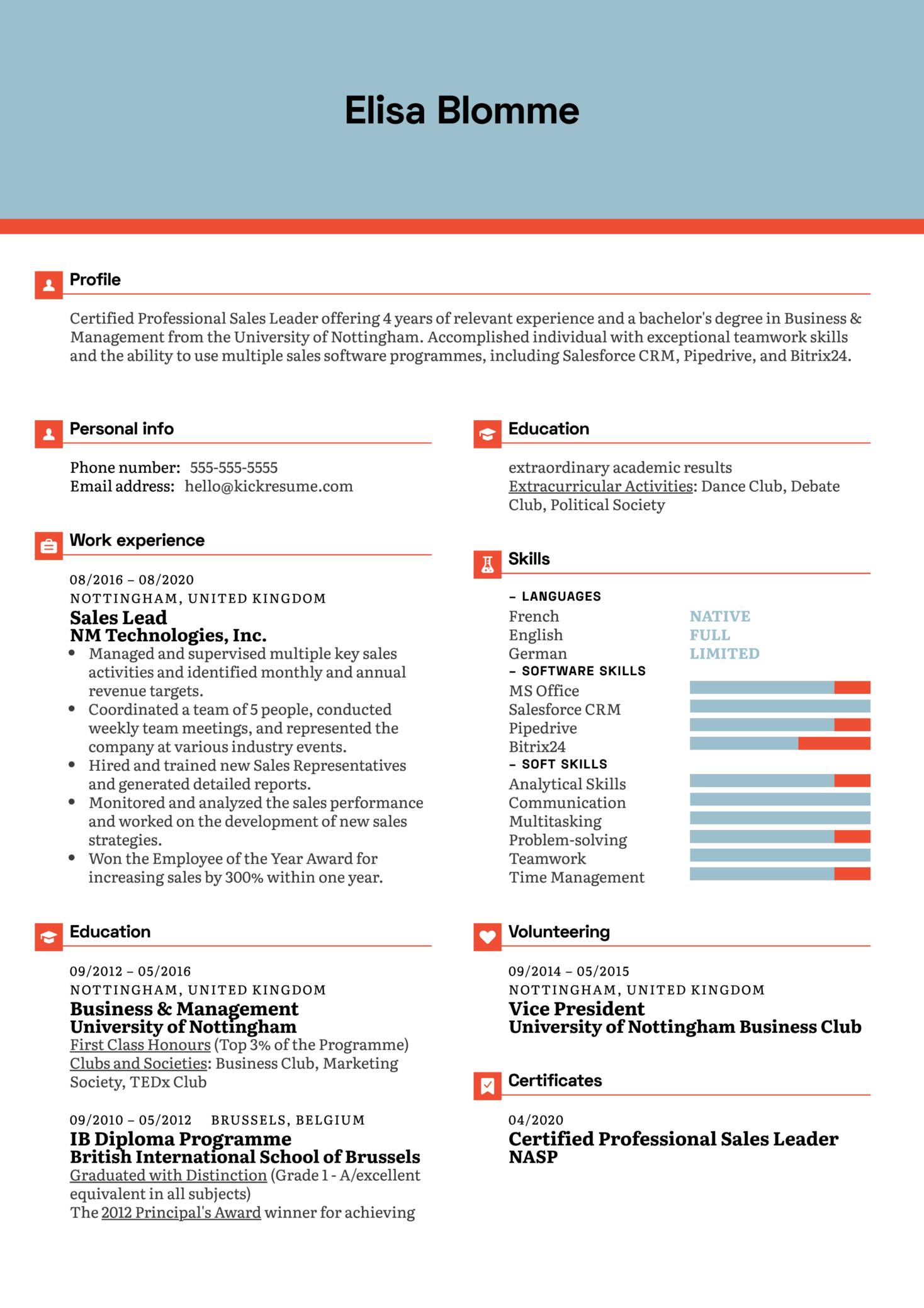 Sales Lead Resume Example