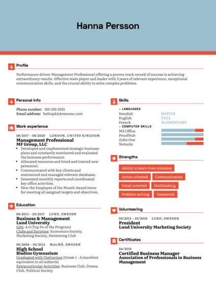 Management Professional Resume Example