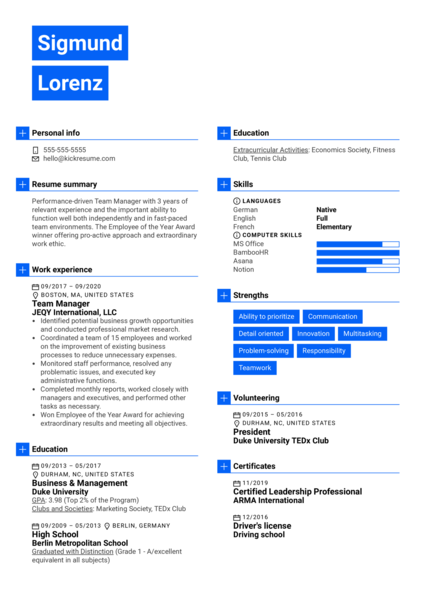Team Manager Resume Example