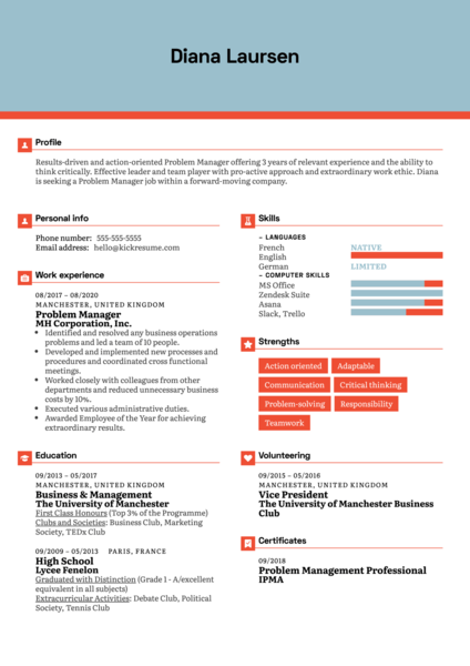 Problem Manager Resume Example