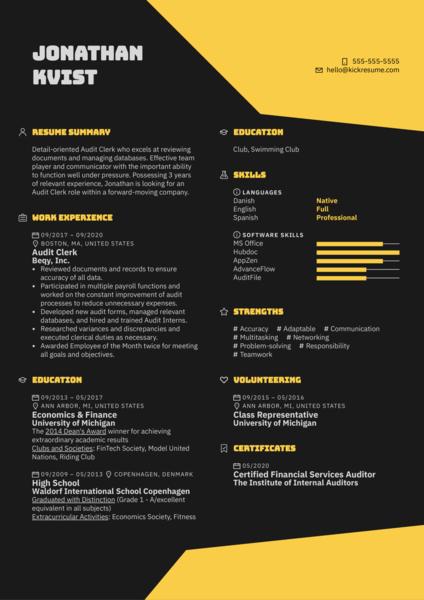 Audit Clerk Resume Sample