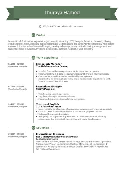 UNFPA Intern Resume Sample