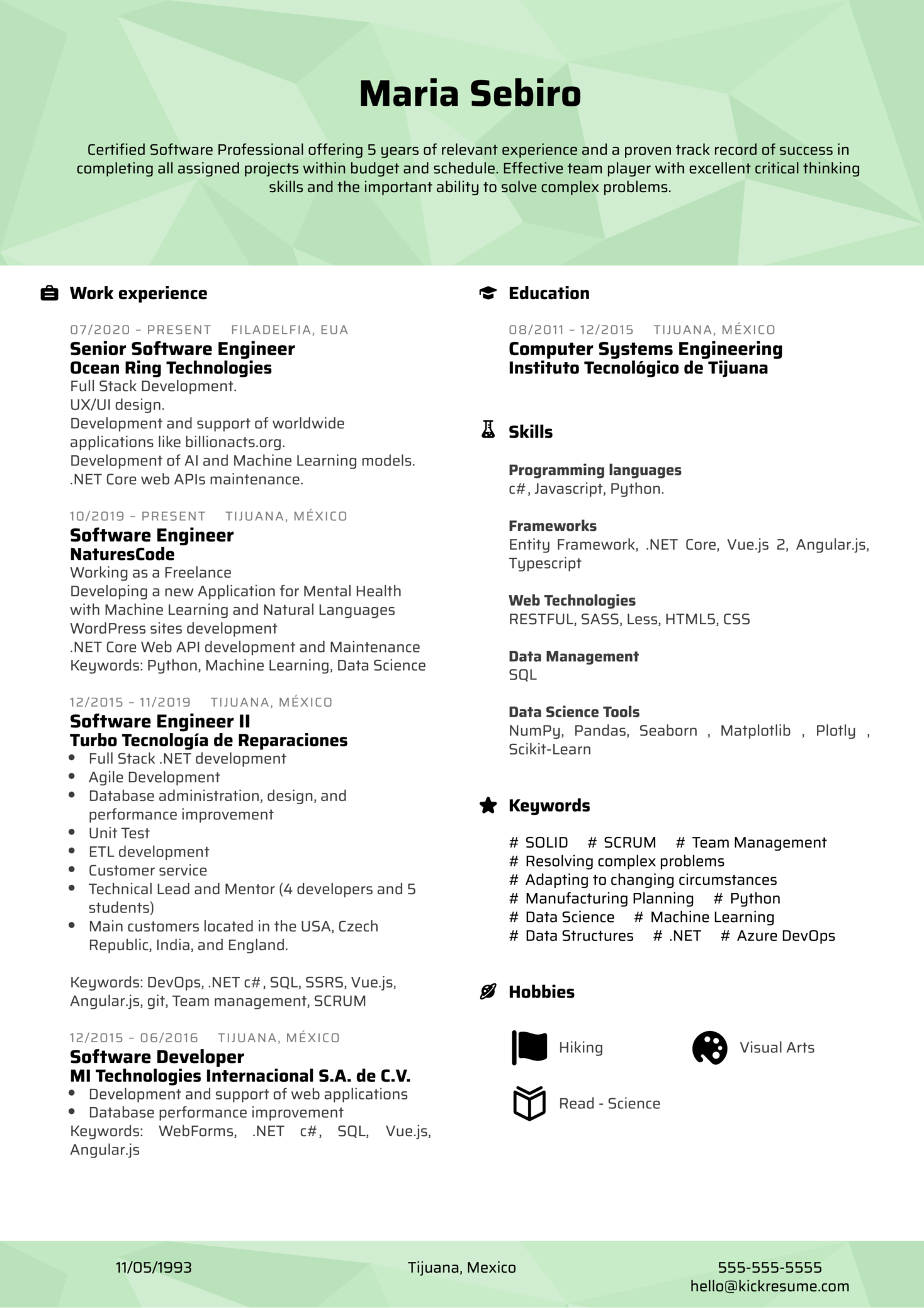 Software Professional at NaturesCode Resume Example (Part 1)