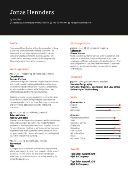 Maersk Business Partner CV Example