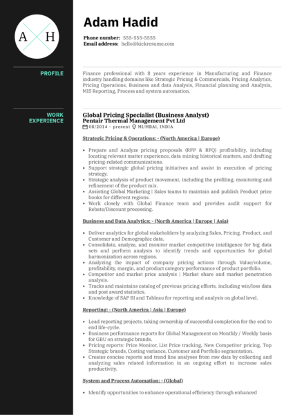 Honeywell Pricing Analyst Resume Example