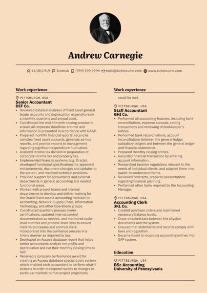 Senior Accountant CV Resume Example