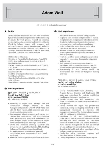 HSE Auditor Resume Sample
