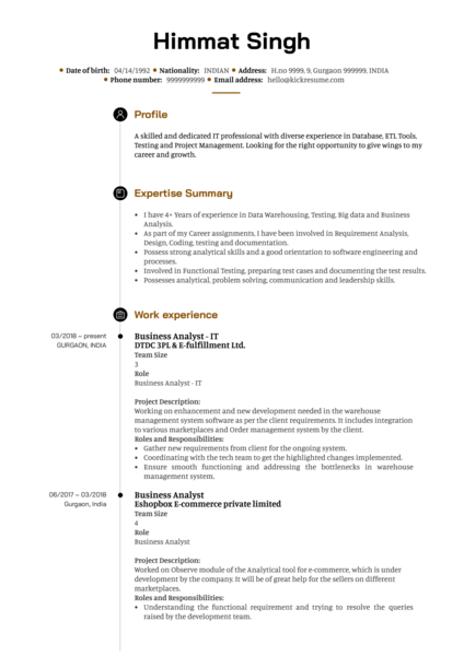 DTDC Business Analyst Resume Template