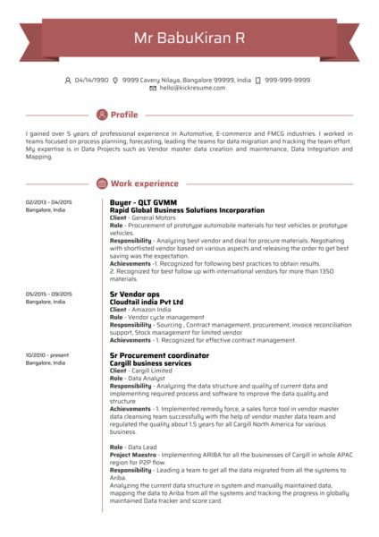 Data Analyst CV Example