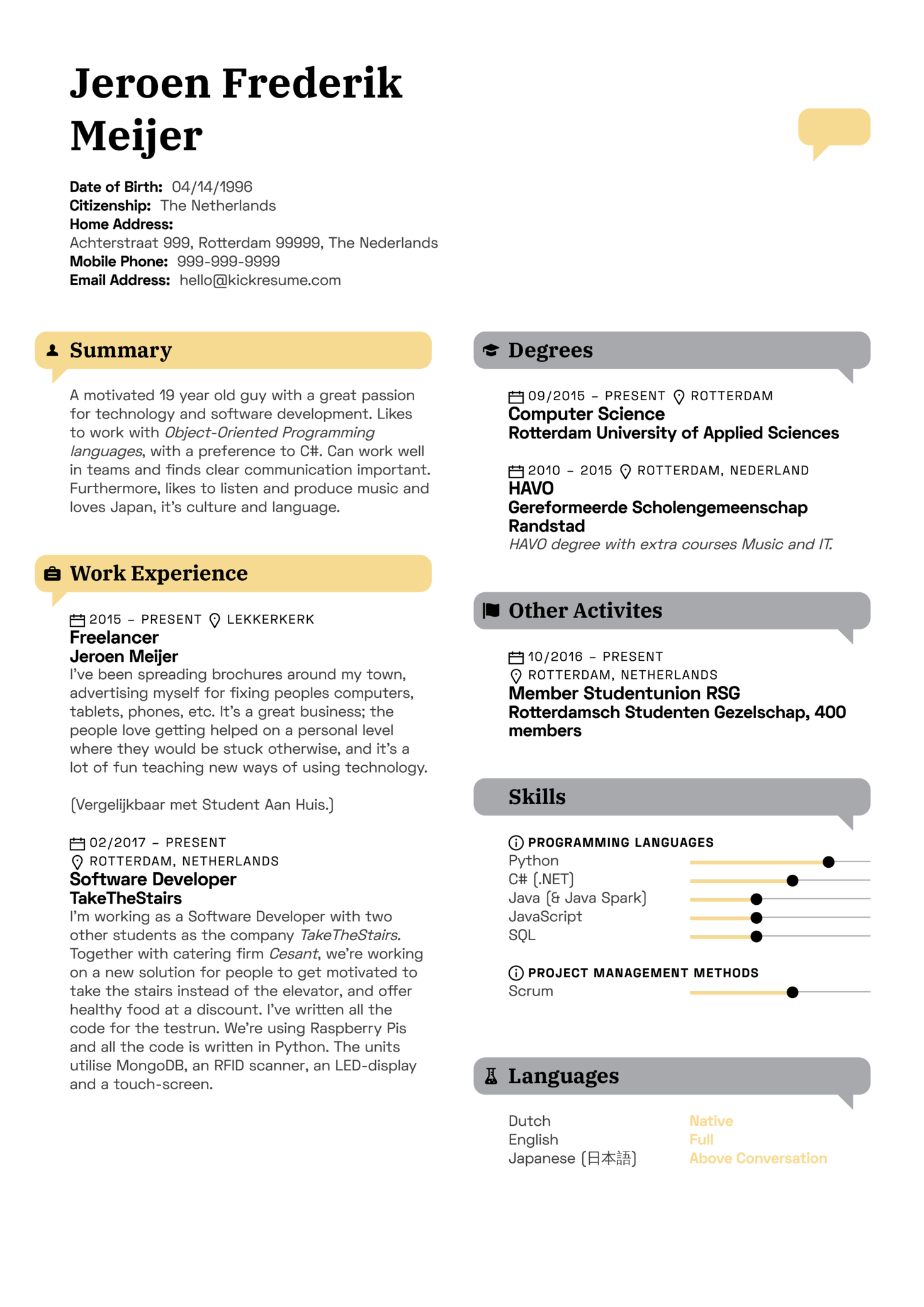 Fusion Systems Software Developer Resume Example (Teil 1)