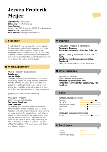Fusion Systems Software Developer Resume Example
