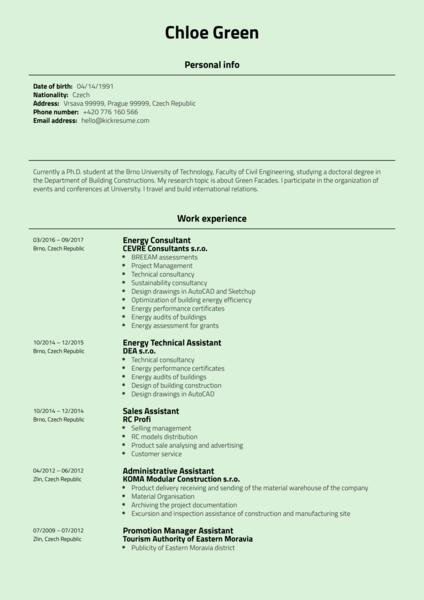 Project Coordinator CV Example