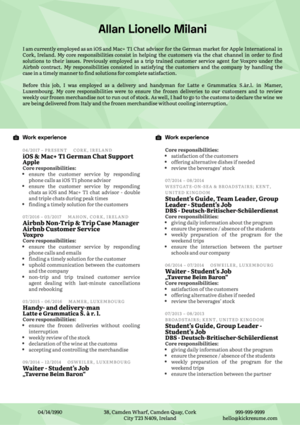 Apple Customer Support Resume Example