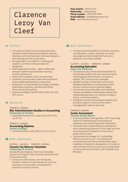 Mid-level Accountant Resume Sample