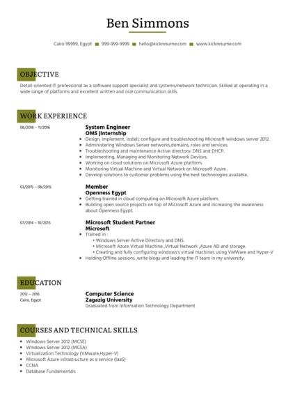 System Administrator CV Sample