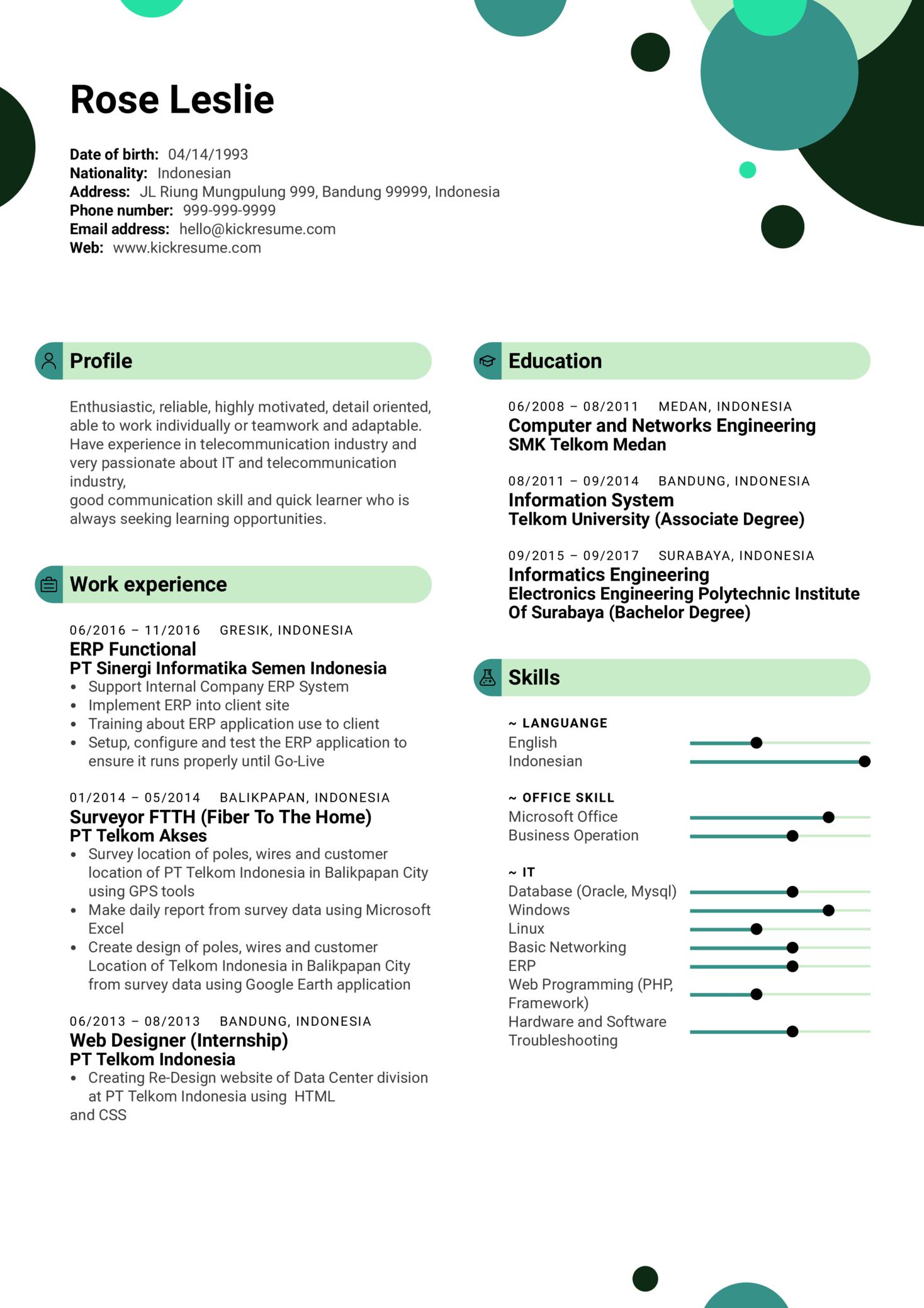 ERP Functional Analyst Resume Sample (Part 1)