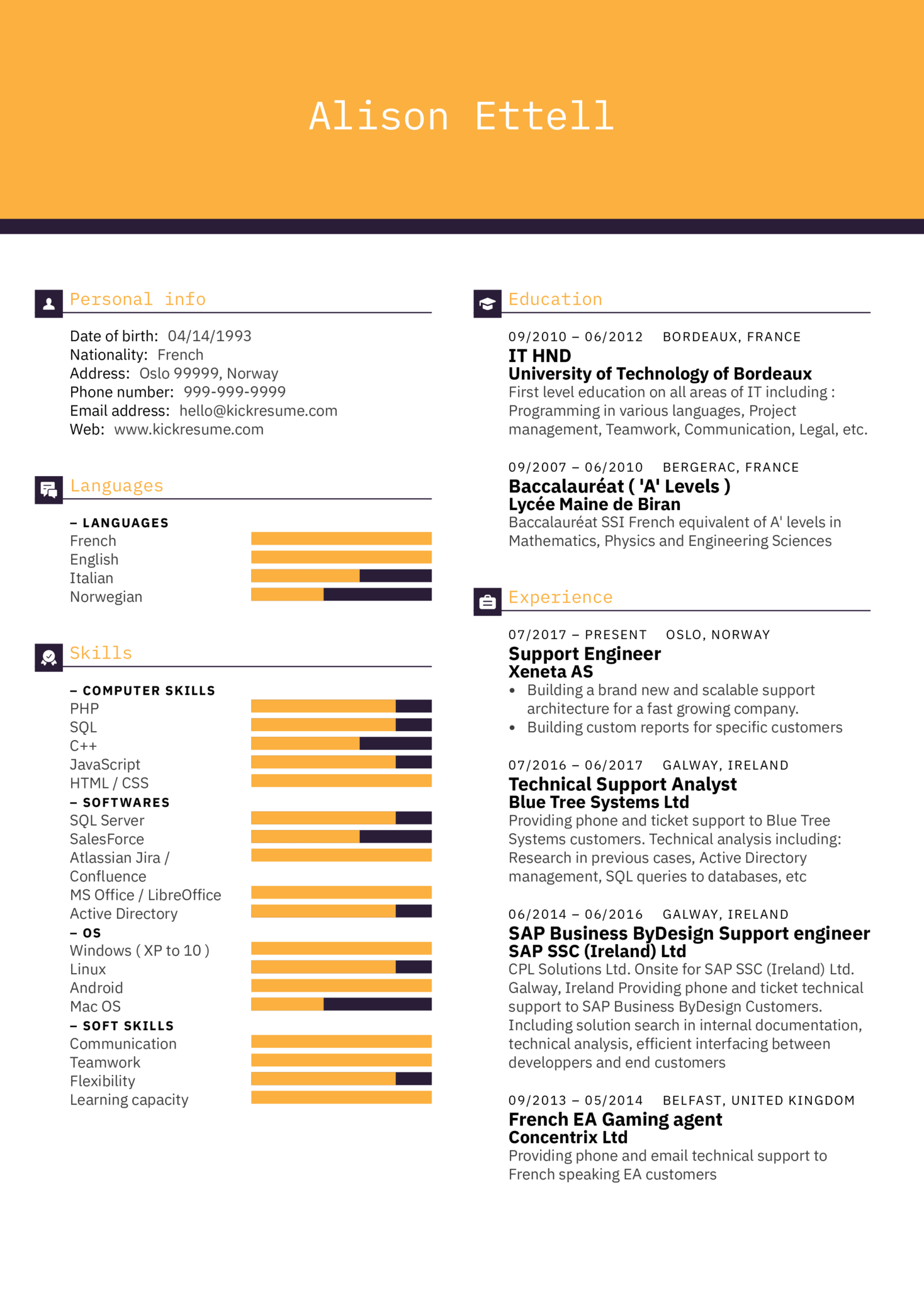 Technical Support Engineer Resume Sample (parte 1)